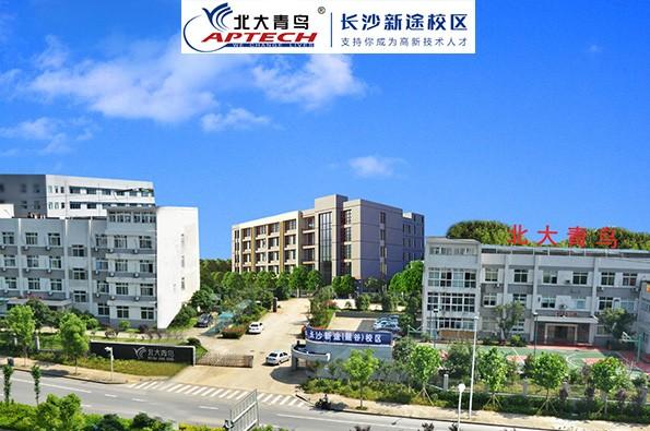 长沙北大青鸟学校-新途校区