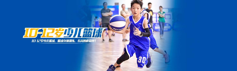 西安篮之星篮球合乐彩票app学校 横幅广告