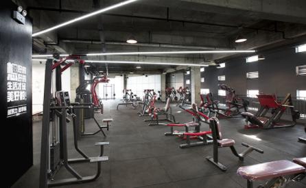 昆明567go健身教练万博网页版登录学校-器械展示