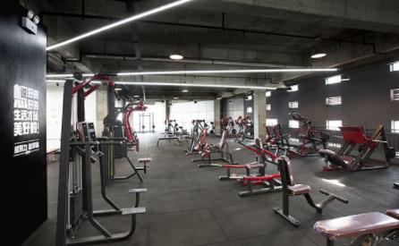 成都567go健身教练千赢国际登录学校-器械展示