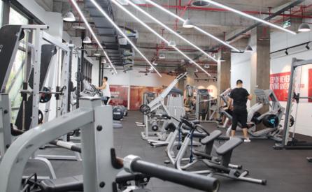 重庆567go健身教练龙8国际注册学校-器械展示